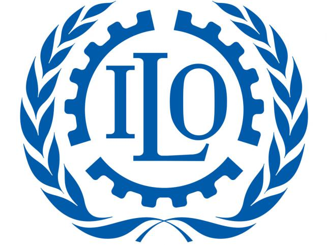 National TVET Data System for ILO
